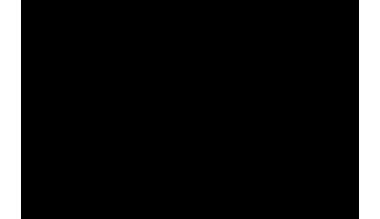FELMINI